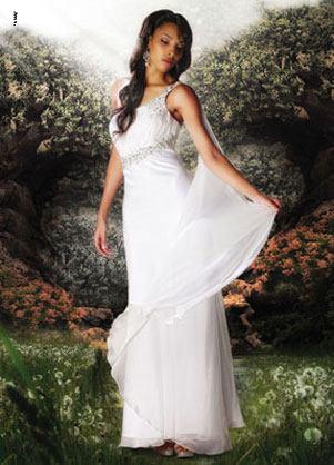 e465f4b0d2d Atrium Executive Limousine   Prince Tours – Dresses